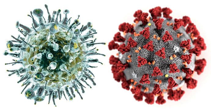 https://www.jcap.cz/wp-content/uploads/2020/09/koronavirus-vs.-chripka.png